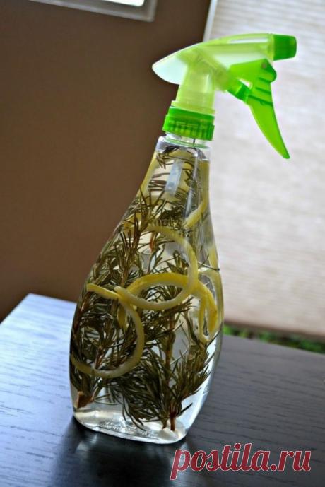 Как навести порядок в холодильнике раз и навсегда / Домоседы