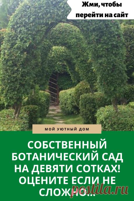 Как красиво оформить свой сад