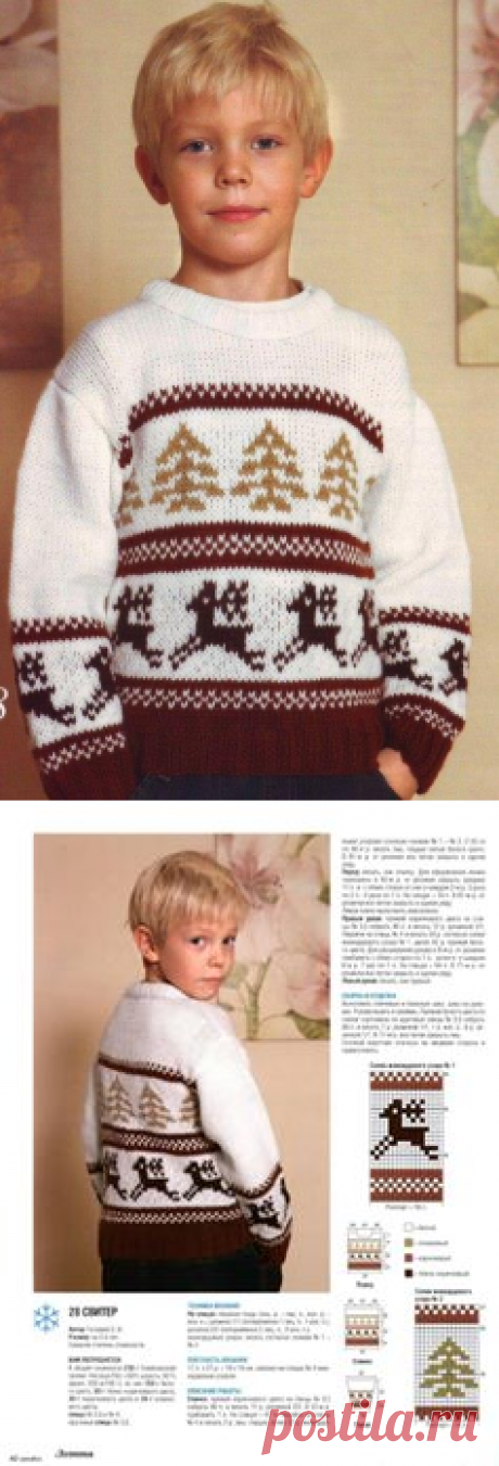 Sweater for the boy with deer