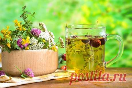 9 трав и приправ, которые спасут от вирусов и простуды - Стильные советы