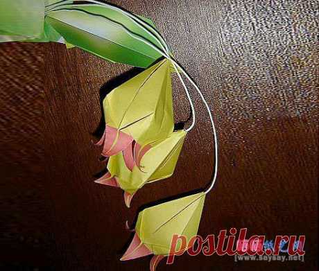 Bell of an orchid of origami to Enter the textbook _ _ Origami Origami the Textbook - drying on the sun art paper a network