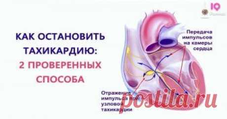 Как быстро остановить тахикардию два простых способа Наверное, каждому из вас знакомо состояние, при котором наблюдается учащенное сердцебиение. Как можно совладать с такой ситуацией? Есть несколько вариантов, но здесь речь пойдет о двух. 1. Если вдруг происходит стремительное похолодание, наше сердце начинает биться в более медленном темпе. Так центральная нервная система приспосабливается к изменениям окружающей среды. В первую очередь сердце «ответит» на …