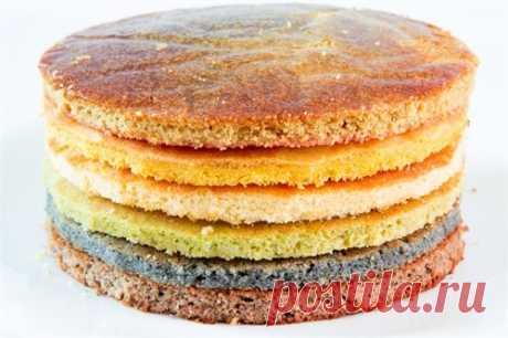 10 советов как совмещать коржи для торта | Рецепты выпечки Dr. Oetker | Яндекс Дзен