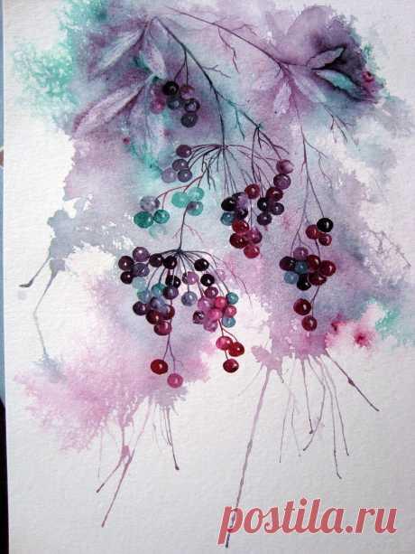 Elderberries+2.jpg (1196×1594)
