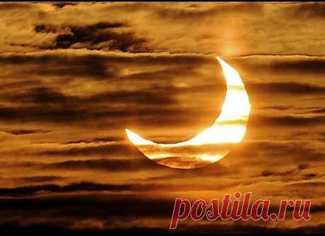Самые потрясающие фото солнечного затмения : НОВОСТИ В ФОТОГРАФИЯХ