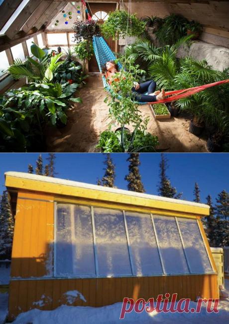 5 интересных идей, как построить зимнюю теплицу своими руками | Дела огородные (Огород.ru)