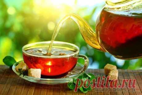 23 полезных добавок к чаю