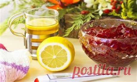 Еда против простуды: 7 вкусных лекарств В самый разгар зимы нужно особенно бережно относиться к своему здоровью – избегать сквозняков, носить головной убор, шарф и теплую обувь, принимать витамины и не забывать о горячем питании. Кстати, именно правильная еда может стать мощной защитой от вирусов. В нашей статье вы найдете 7...