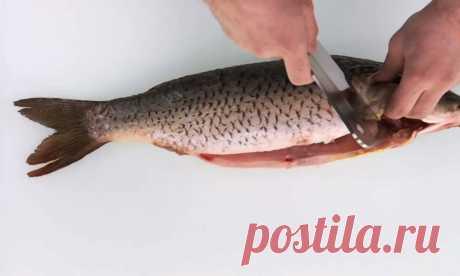 Как правильно жарить рыбу — CookingPad