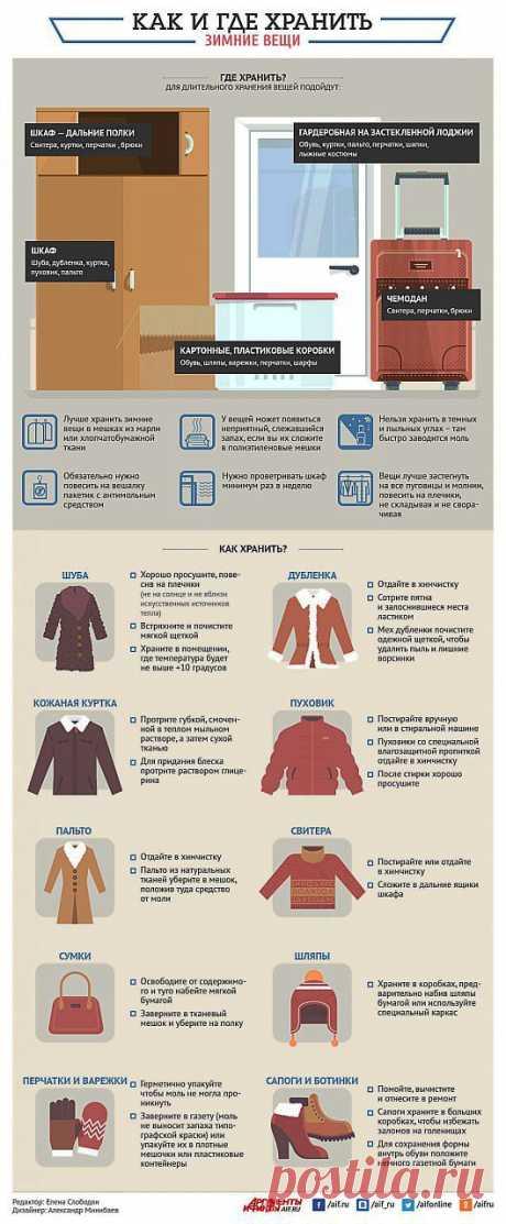 Где и как хранить зимние вещи? Инфографика | Полезные инструкции от aif.ru
