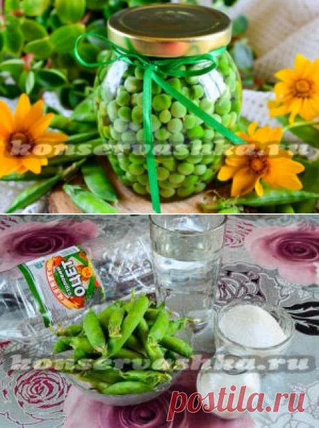 Консервирование зеленого горошка в домашних условиях на зиму