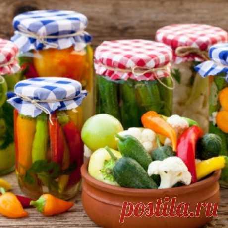 Pickles — 15 original recipes