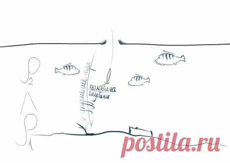Тактика ловли крупного окуня зимой | Секреты рыбака | Яндекс Дзен