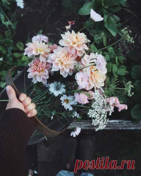 Весна играла на рояле, Цепочка звонких милых нот, Звучала музыка живая Гитара, флейта и гавот В волшебных звуках искрах Света, Пленяя сердце волшебством, Весна играла на рояле Звучала в музыке душой.