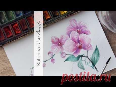 Как рисовать орхидею ♡ Урок рисования цветы в акварели | Katerina Rise