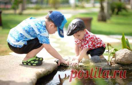 Задачи и цели экологического воспитания 🎯 в образовательных учреждениях. #дети #воспитание #экология  #родителям #мамам