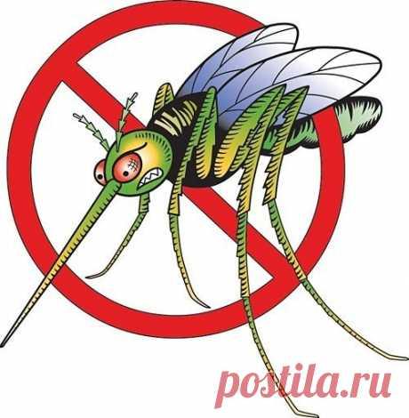Способы избавиться от комаров