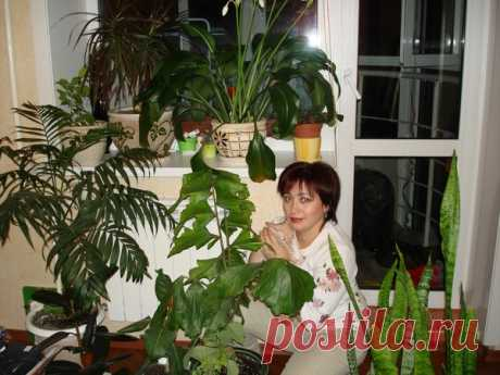 Галина Лозовская