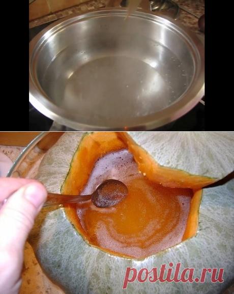 Мёд из тыквы - бальзам для печени!