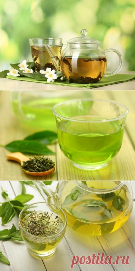 Тысяча и одно полезное свойство зеленого чая