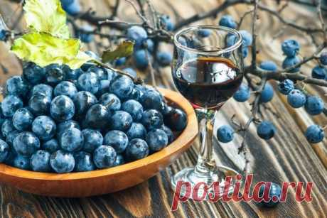 Liqueur from a sloe in house conditions on vodka, to alcohol, a sherry and port Recipes of liqueurs from a sloe on vodka, moonshine, to alcohol, a sherry, port and red wine. Options of liqueurs on the basis of sloe fruits after preparation of sloe gin.