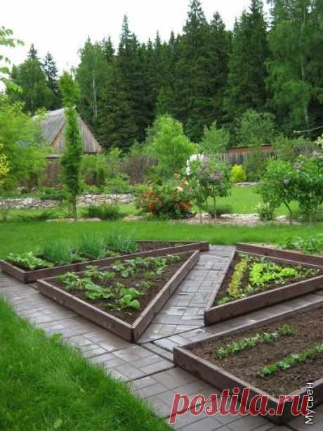 HOW to CREATE the DECORATIVE KITCHEN GARDEN: idea and embodiment.