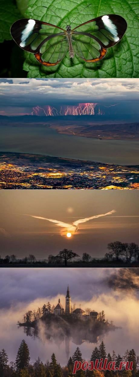 Потрясающие снимки «произведений искусства», созданных самой природой