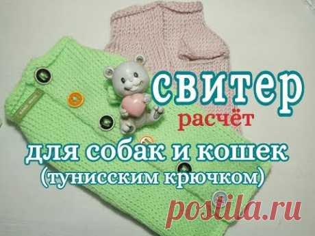 Свитер для собаки и кошки тунисским крючком, Расчет, for dogs tunisian crochet