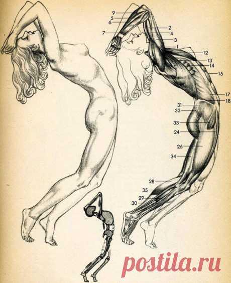 Psychosomatics of diseases of joints