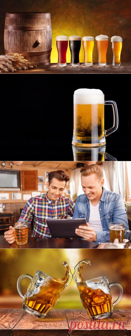 Как варят интеллектуальное пиво? | Еда и кулинария