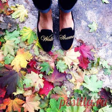 It's Autumn outsid