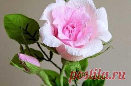 САМОДЕЛКИ. Как сделать конфетный букет из гофробумаги  Хотите преподнести в подарок букет цветов, который не завянет? Ваша любимая любит конфеты? Тогда попробуйте сделать конфетные букеты своими руками из гофрированной бумаги. В каждом цветке будет прият…