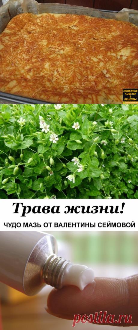 Одноклассники    Быстрый пирог к чаю. Нет проще!!!