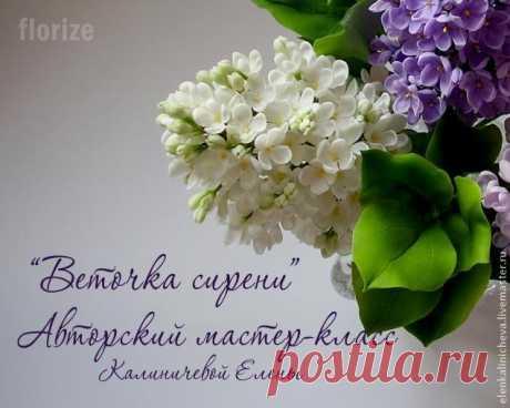 Gallery.ru / Фото #1 - Сирень из холодного фарфора. МК - Vladikana