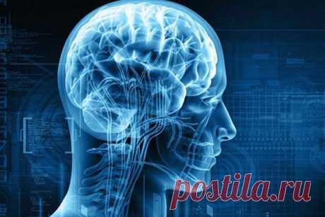 Простая привычка поможет сохранить здоровье мозга Ученые рассказали, какая простая привычка позволит сохранить здоровье головного мозга и повысить его сопротивляемость деструктивным возрастным изменениям.Мозг человека представляет собой очень динамичный орган, который постоянно меняется. Если не придерживаться здорового образа жизни, то...