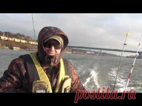 Первый спуск на воду лодки Гладиатор 420 мотор Сузуки 9,9-15