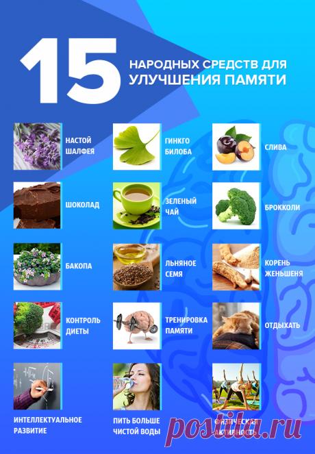 15 народных средств для улучшения памяти
