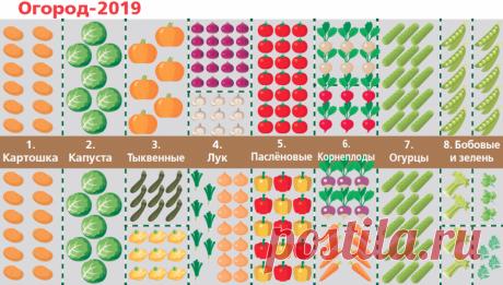 Планы на год. 7 шагов к урожайным грядкам