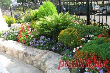Больше, ярче, необычнее. Создаём традиционный цветник на даче В садоводческой литературе традиционные цветники упоминаются под разными названиями, например, садовые или коттеджные.
