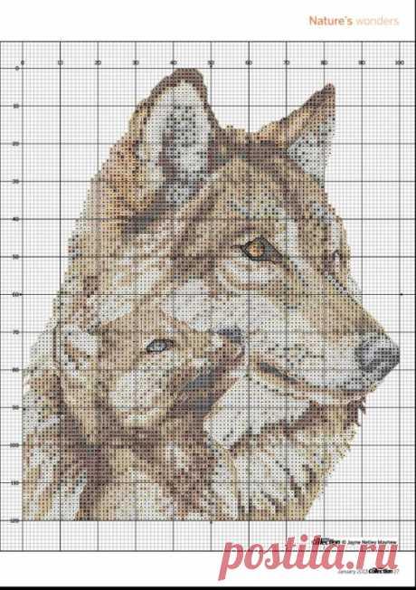 333346-00113-67962088-m750x740-ub1398.jpg (Изображение JPEG, 522×740 пикселов) - Масштабированное (83%)