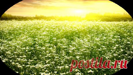 «клипарт *природа,пейзаж*» png