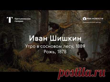 «Утро в сосновом лесу», «Рожь» / История одного шедевра