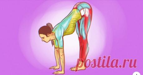 Зачем делать растяжку ног по утрам Гибкость — это молодость. Недаром йоги всегда так говорят своим подопечным. Чем старше ты становишься, тем больше твои сухожилия теряют свою эластичность, а амплитуда движений существенно уменьшается.