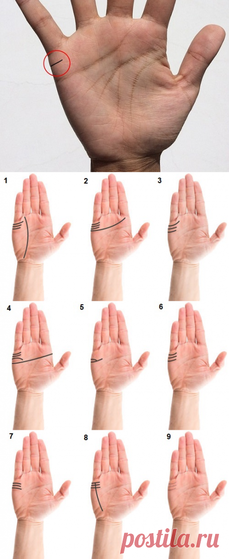 Линия брака на руке: фото с расшифровкой