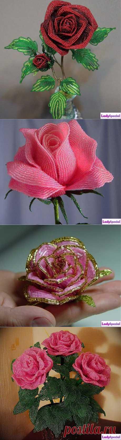 Роза из бисера: схема плетения - Женский журнал LadySpecial.ru
