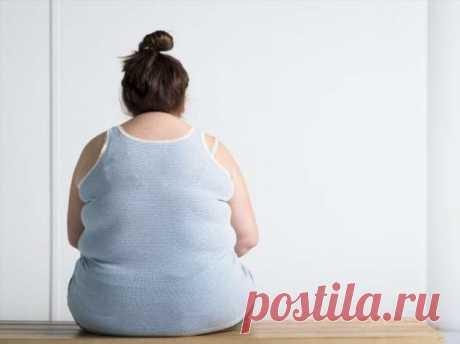 Малышева рассказала, почему ожирение опасно при коронавирусе | Люблю Себя
