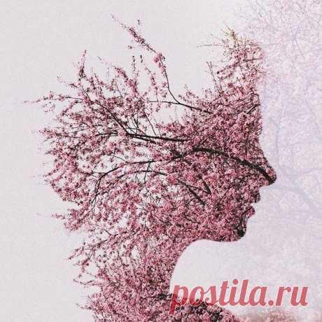 Фотографии на стене сообщества | 32 906 фотографий | ВКонтакте