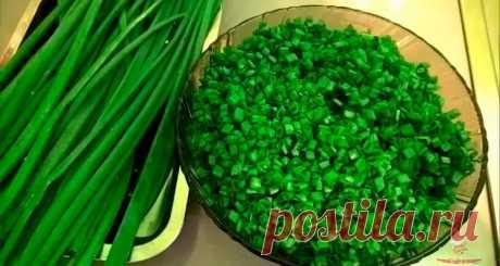 Как правильно заморозить зеленый лук - Лучший сайт кулинарии