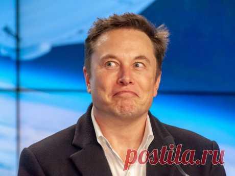 Настоящее будущее: Илон Маск, Джефф Безос и собаки | ПроЧтение | Яндекс Дзен