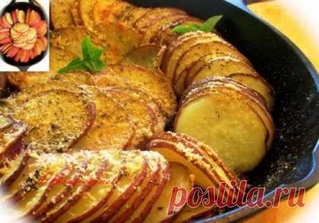 Запеченный картофель в духовке Дорогие друзья! Сегодня предлагаю вам вкусный и легкий рецепт второго блюда – запеченный картофель в духовке. Прекрасно подходит на ужин или обед, для тех , кто не любит...
